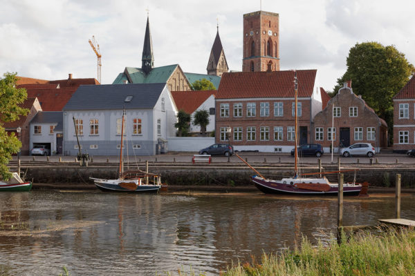 Ribe by